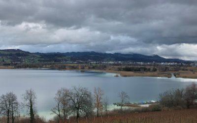 NRP-Umsetzungsprogramm Kanton Zürich