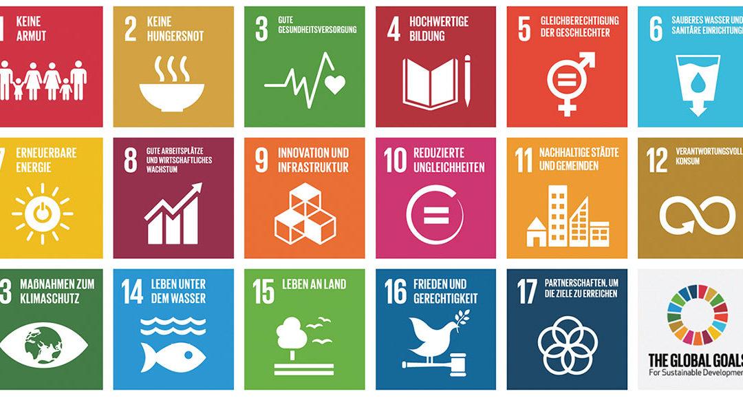 SDGs und der Berner Kompetenzverbund für die lokale Nachhaltige Entwicklung – geht das zusammen?