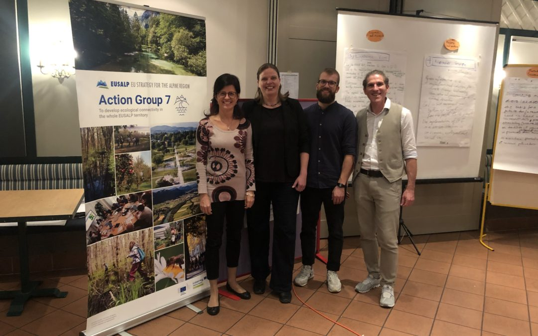 We design a vision for Green Infrastructure in the Alpine Space
