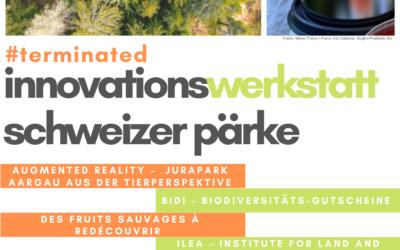 Grüne Innovationen, frisch aus der Werkstatt: beeindruckende Schlusspräsentationen in Willisau